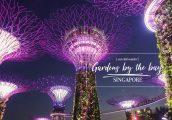 [รีวิว] Gardens By The Bay สิงคโปร์ เข้าโดมยักษ์ และ ทางเดินสกายเวย์สุดอลังการ