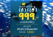 โปรโมชั่นดำน้ำลึก ( Scuba Diving )ลด 1500 บาท มัดจำ 999 มาได้ตลอดชีพ