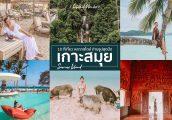 รวม 10 ที่เที่ยวเกาะสมุย ถ่ายรูปสุดปัง เที่ยวเกาะหมู ปีนน้ำตก คาเฟ่ บีชคลับ ที่พัก ครบจบที่เดียว!