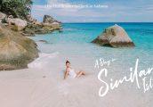 [รีวิว] หมู่เกาะสิมิลัน 1 วัน หาดทรายขาวนุ่ม น้ำสีฟ้าใสกิ๊ง อัศจรรย์ทะเลไทย มากี่ครั้งก็ประทับใจ